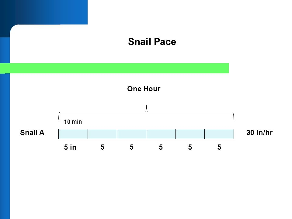 One Hour Snail A 5 in55 Snail Pace 30 in/hr 555 10 min
