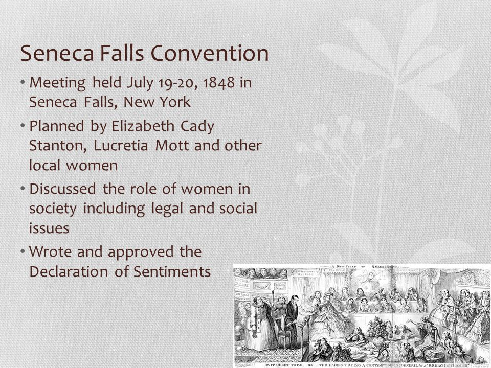 Seneca Falls Convention Meeting held July 19-20, 1848 in Seneca Falls, New York Planned by Elizabeth Cady Stanton, Lucretia Mott and other local women