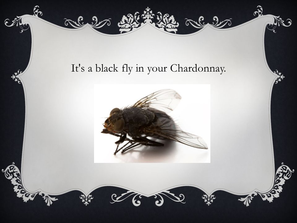 It s a black fly in your Chardonnay.