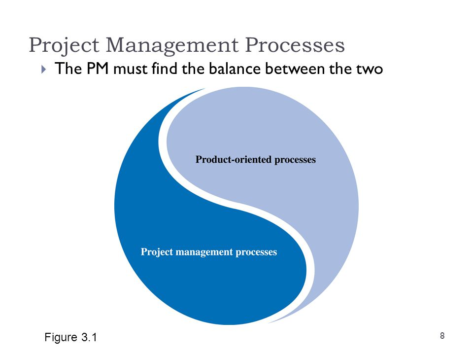 Project Management Processes The PM must find the balance between the two Figure 3.1 8