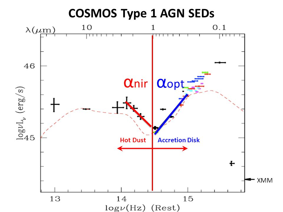 COSMOS Type 1 AGN SEDs XMM Hot DustAccretion Disk α nir α opt