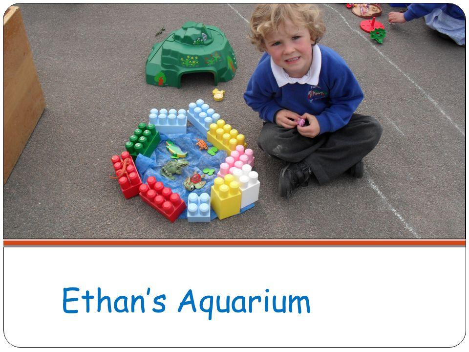 Ethans Aquarium