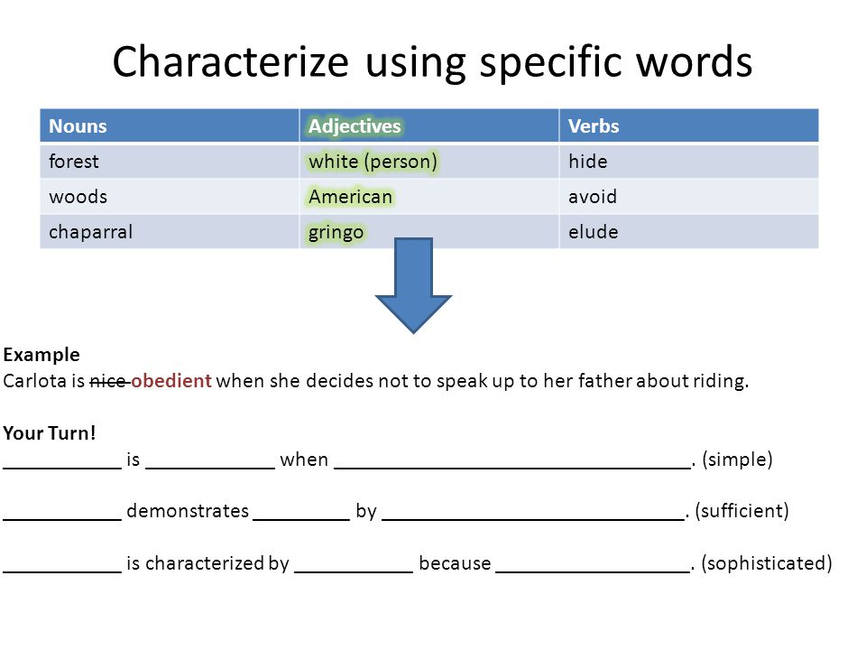 Characterize using specific words NounsVerbs foresthide woodsavoid chaparralelude Example Carlota is nice obedient when she decides not to speak up to