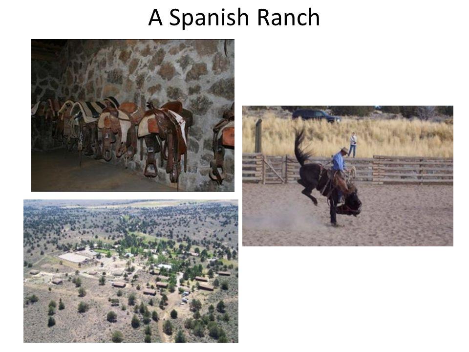A Spanish Ranch