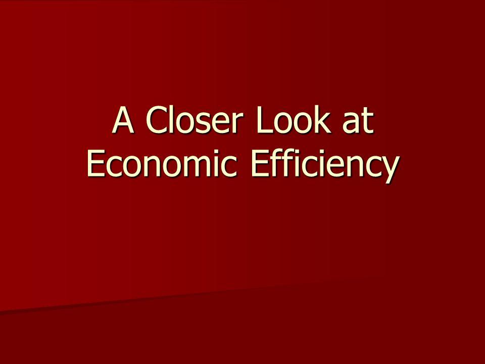 A Closer Look at Economic Efficiency