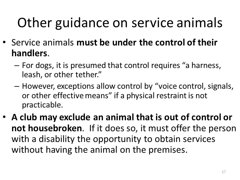 Other guidance on service animals Service animals must be under the control of their handlers.