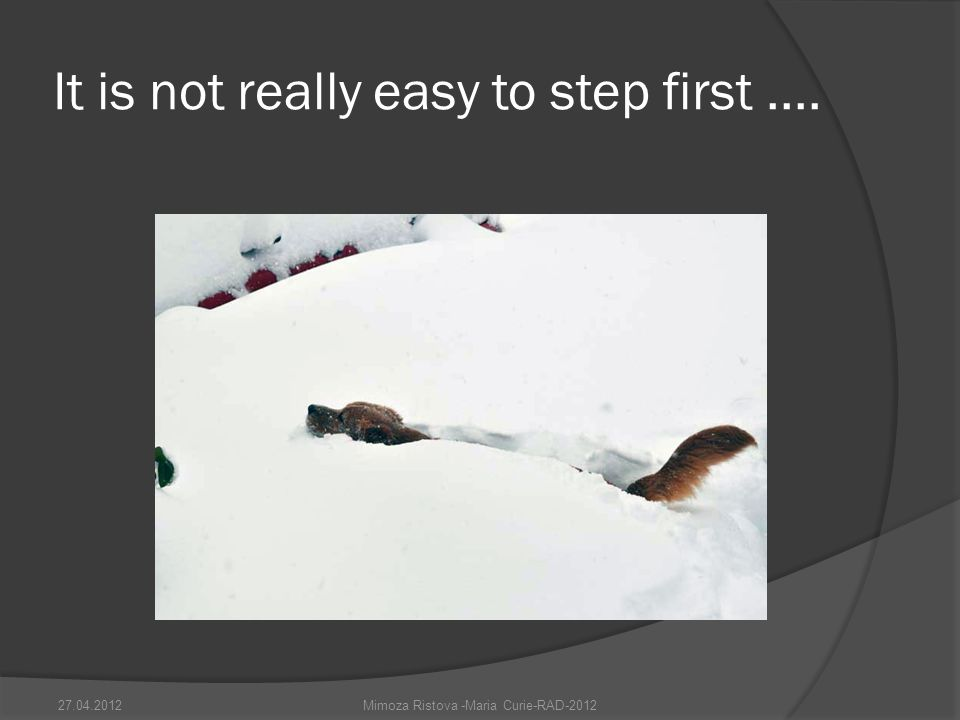 It is not really easy to step first.... Mimoza Ristova -Maria Curie-RAD-201227.04.2012