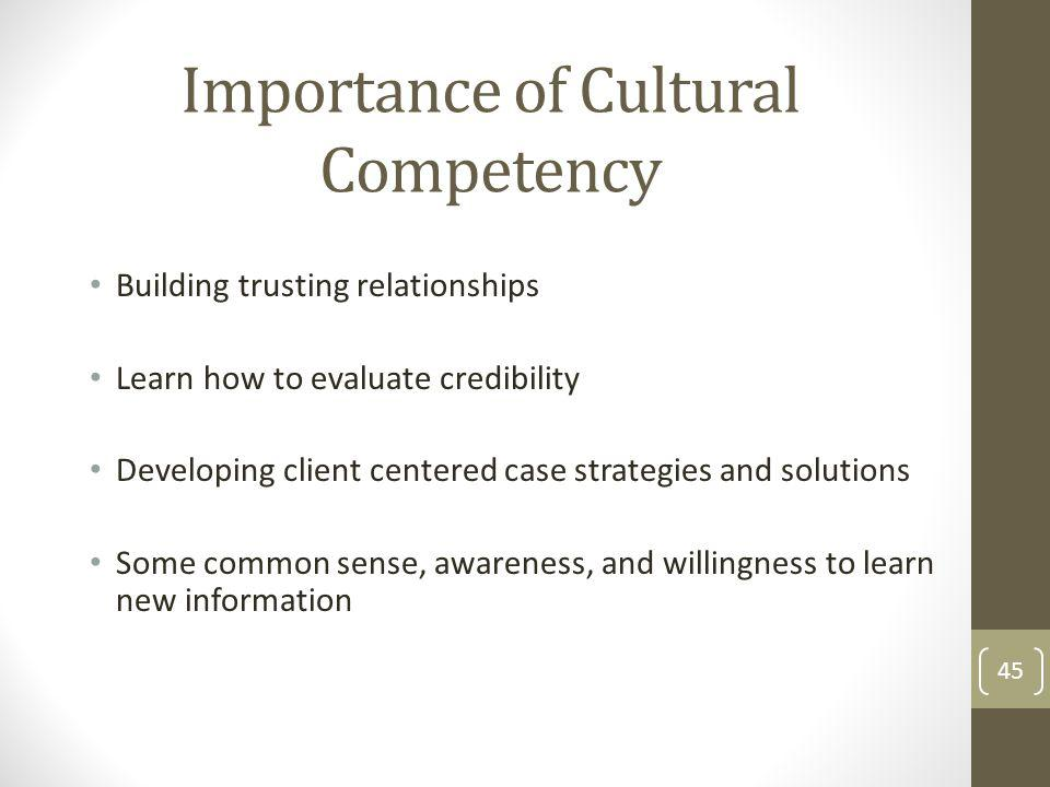 Importance of Cultural Competency Building trusting relationships Learn how to evaluate credibility Developing client centered case strategies and solutions Some common sense, awareness, and willingness to learn new information 45
