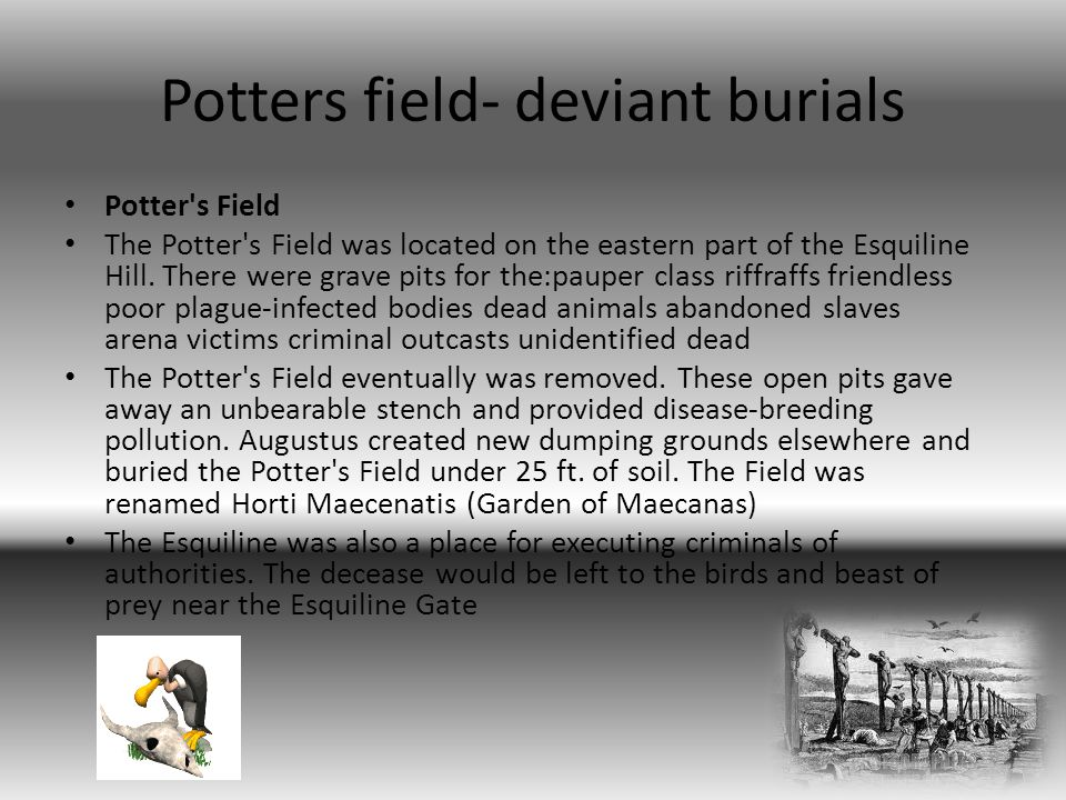 Potters field- deviant burials Potter s Field The Potter s Field was located on the eastern part of the Esquiline Hill.