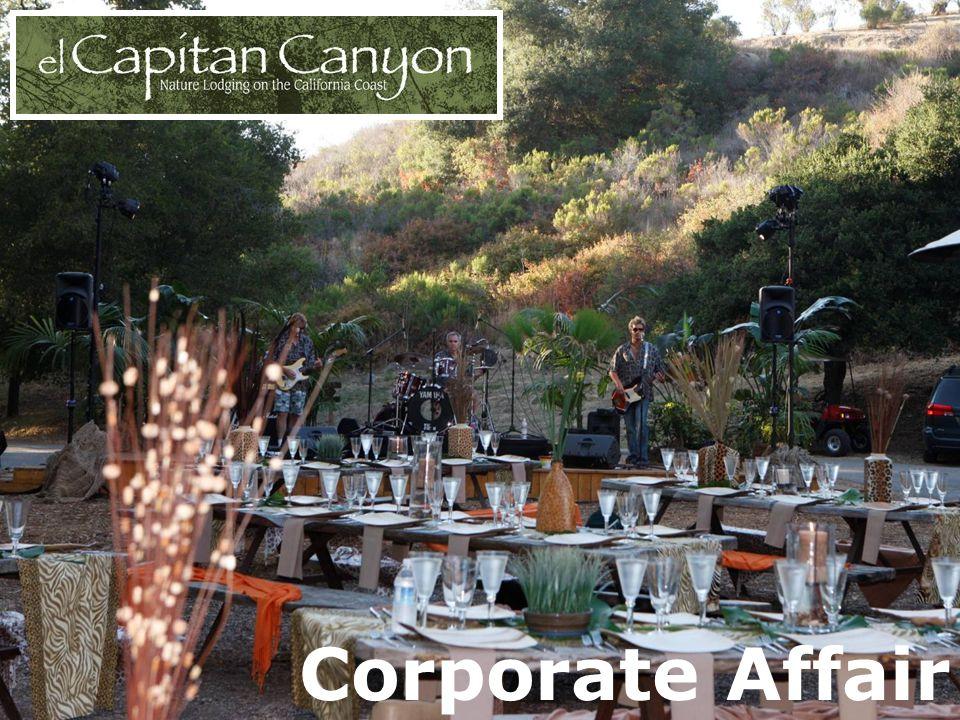 Corporate Affair
