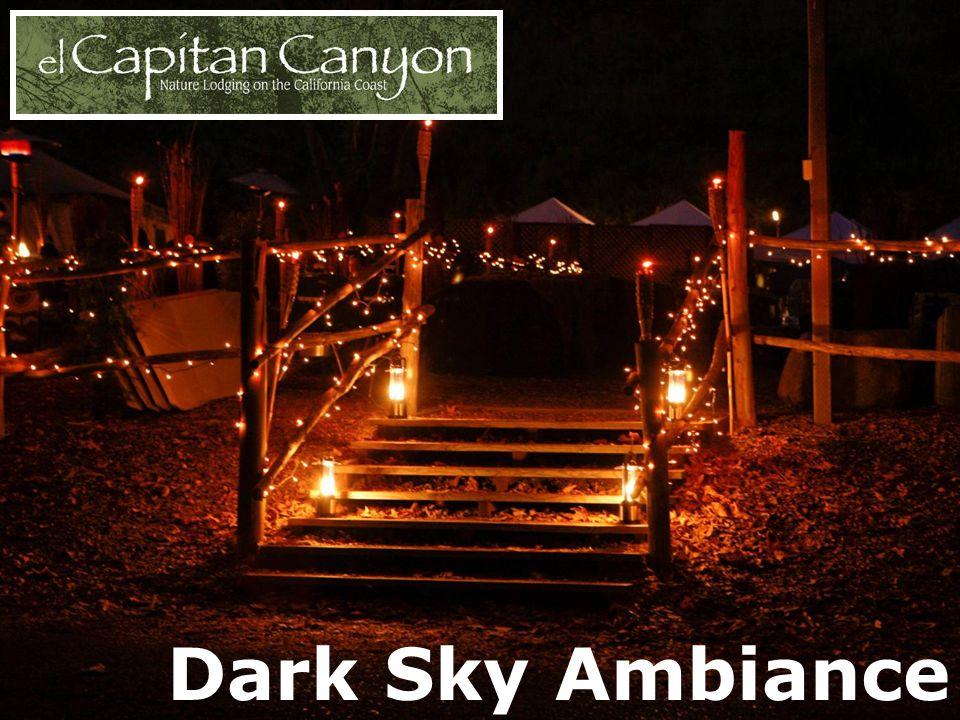 Dark Sky Ambiance