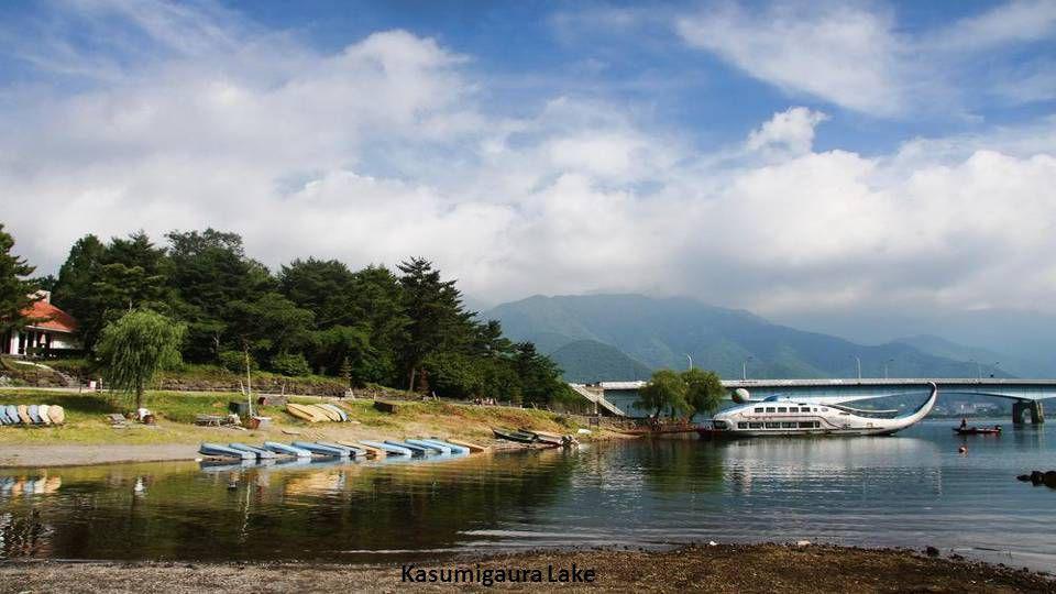 Fuji Lake