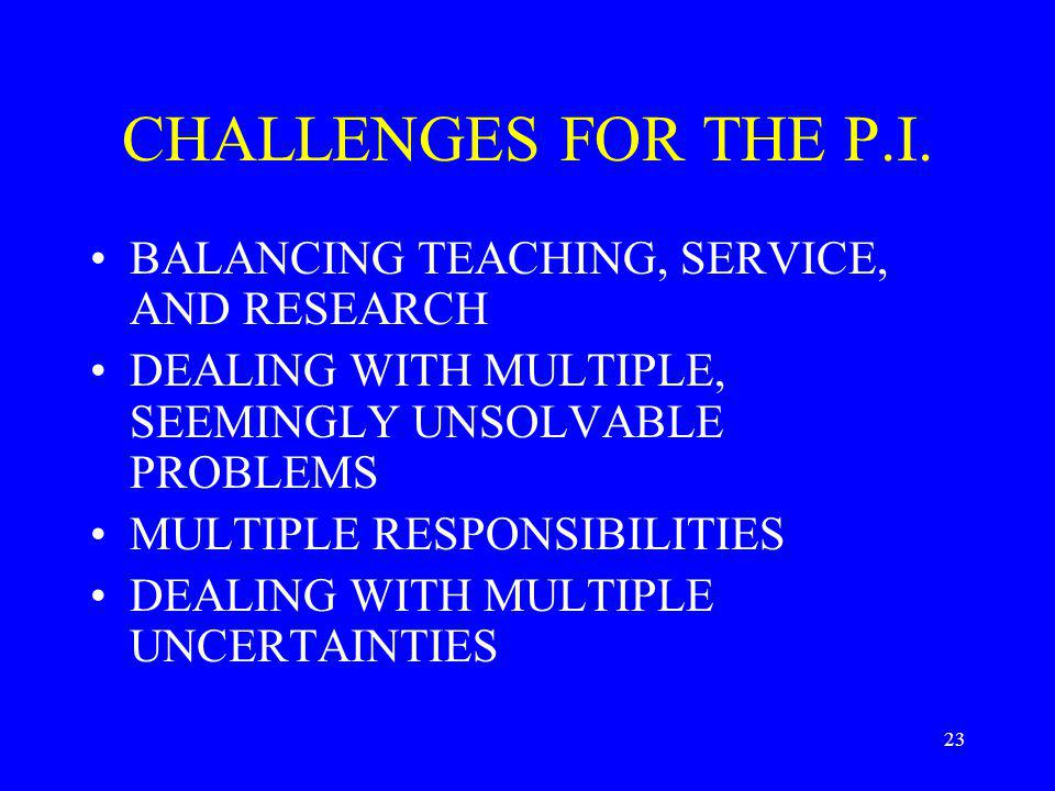 23 CHALLENGES FOR THE P.I.