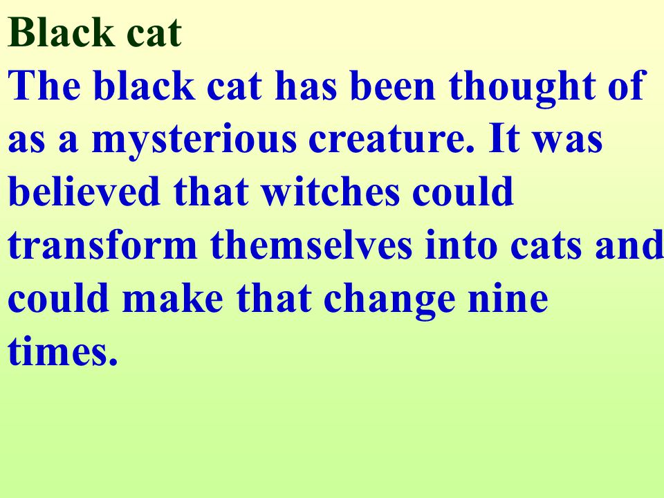 How about the black cat that crossed your path. How about the black cat that crossed your path.