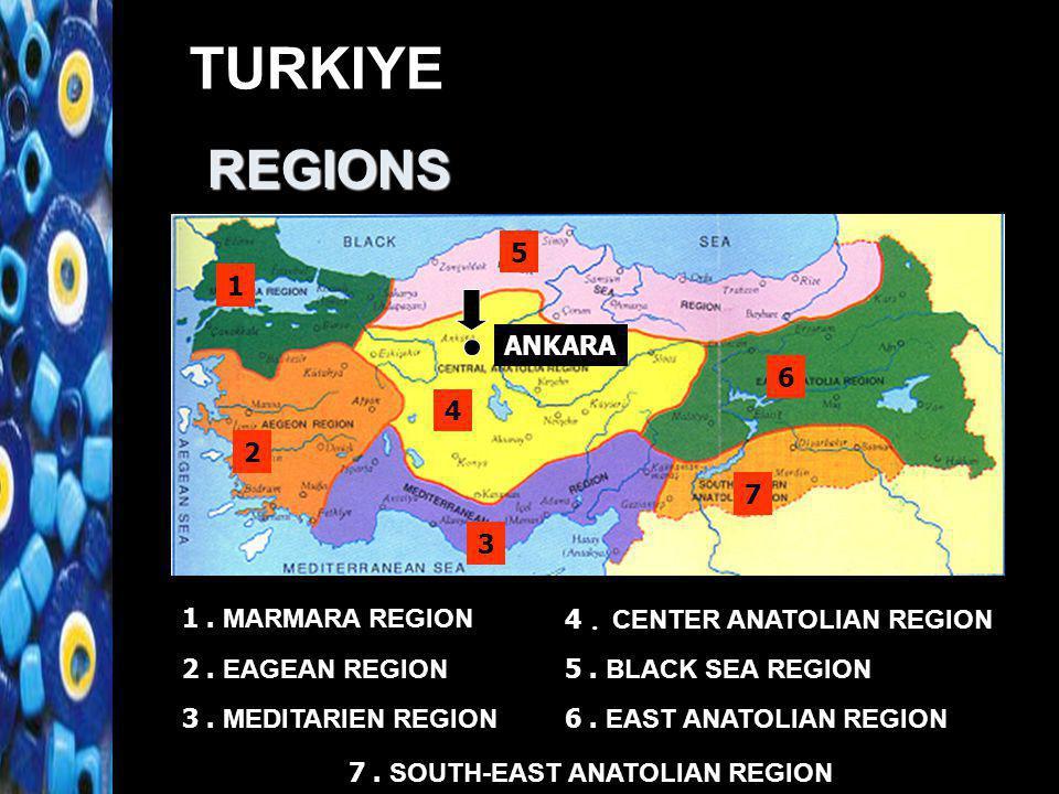 TURKIYE 1 2 3 4 5 1. MARMARA REGION 2. EAGEAN REGION 3. MEDITARIEN REGION 4. CENTER ANATOLIAN REGION 5. BLACK SEA REGION 6 6. EAST ANATOLIAN REGION 7