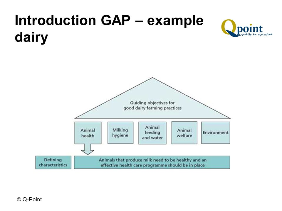 © Q-Point Introduction GAP – example dairy