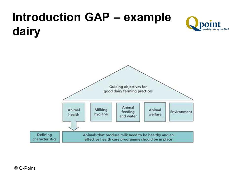 © Q-Point Introduction GAP Techniques on production methods e.g.