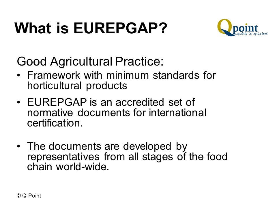 © Q-Point What is EUREPGAP.