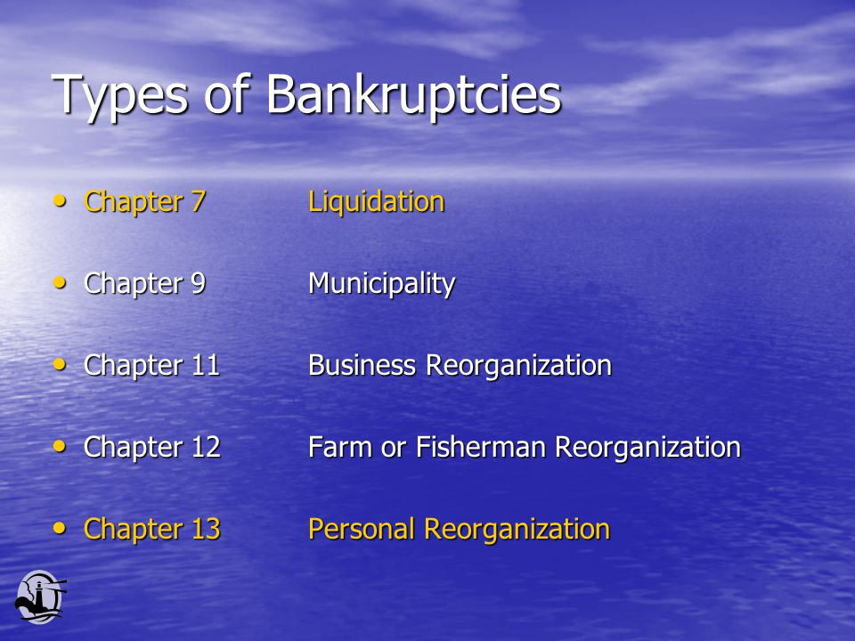 Types of Bankruptcies Chapter 7Liquidation Chapter 7Liquidation Chapter 9Municipality Chapter 9Municipality Chapter 11Business Reorganization Chapter 11Business Reorganization Chapter 12Farm or Fisherman Reorganization Chapter 12Farm or Fisherman Reorganization Chapter 13Personal Reorganization Chapter 13Personal Reorganization