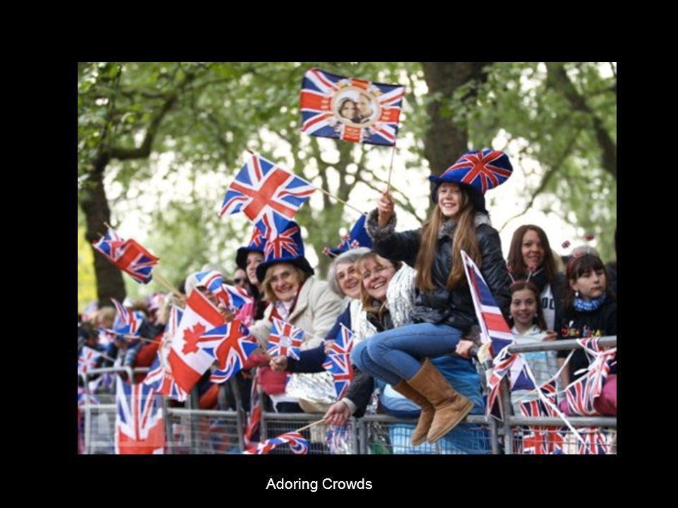 Adoring Crowds