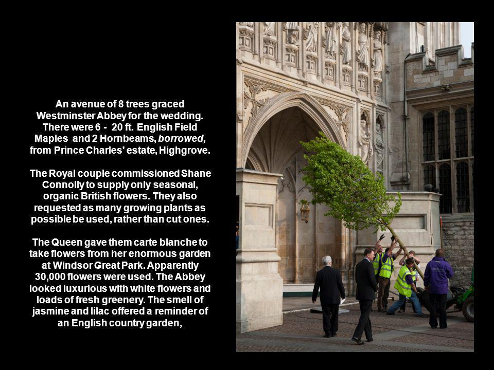 An avenue of 8 trees graced Westminster Abbey for the wedding.