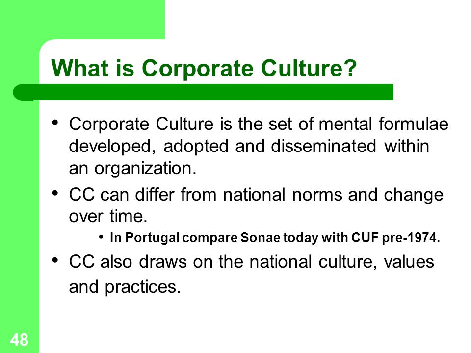 48 What is Corporate Culture.
