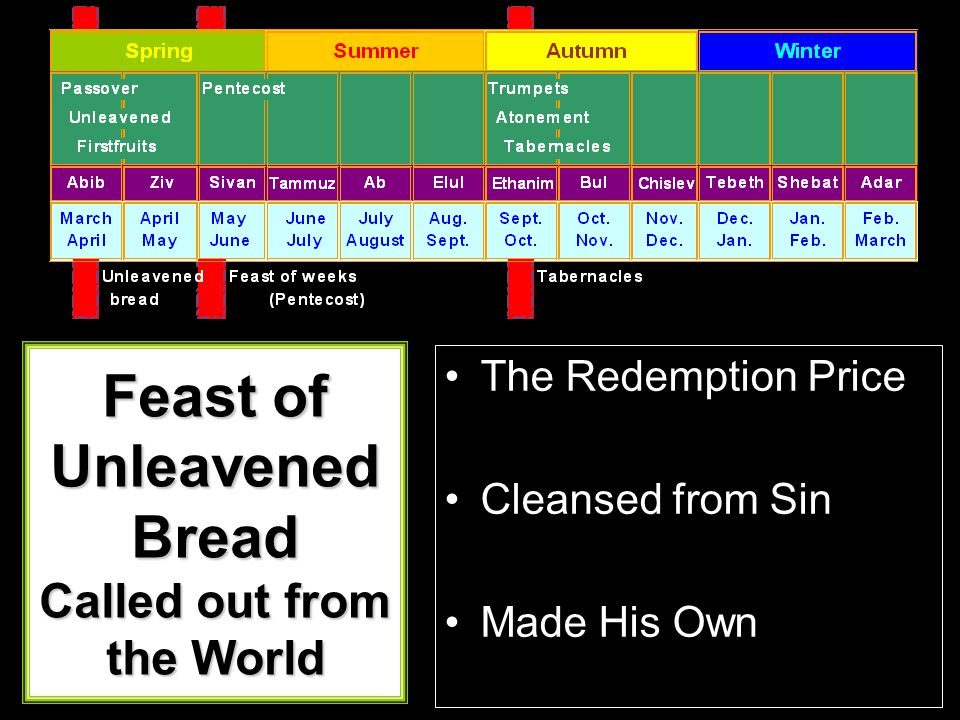 The Redemption Price Cleansed from Sin Made His Own Feast of Unleavened Bread Called out from the World