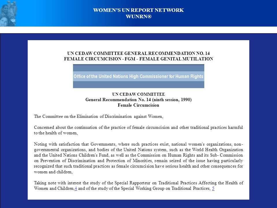 WOMENS UN REPORT NETWORK WUNRN® UN CEDAW COMMITTEE GENERAL RECOMMENDATION NO.