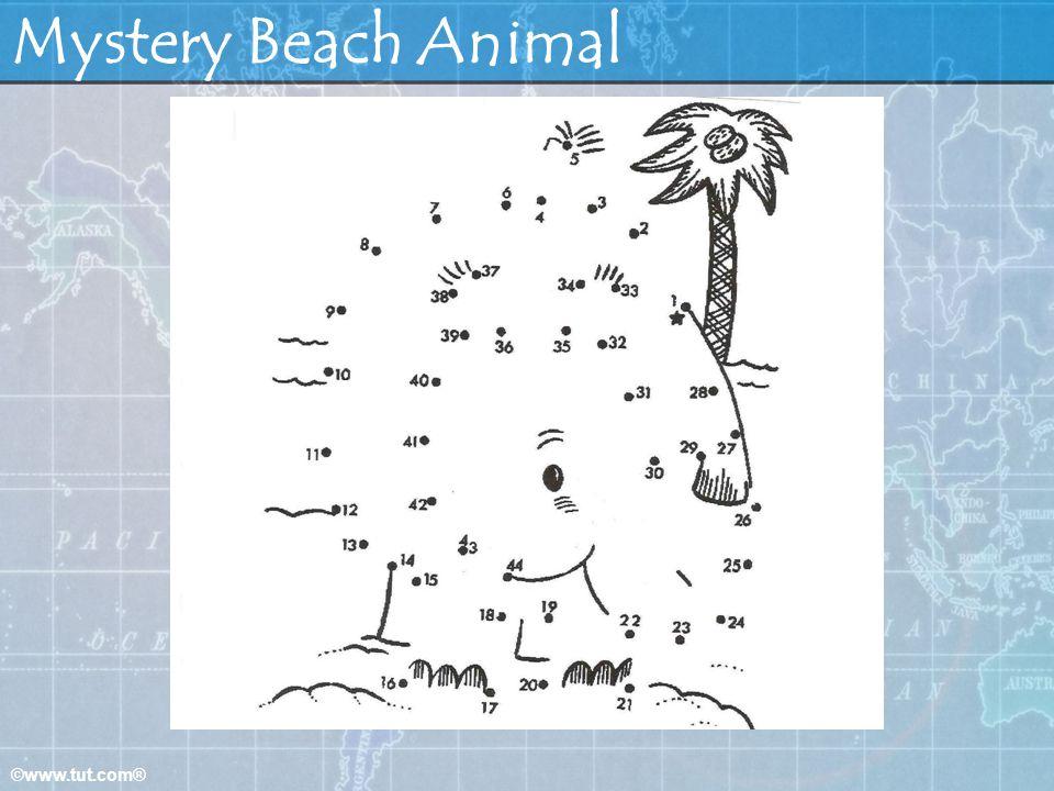 ©www.tut.com® Mystery Beach Animal