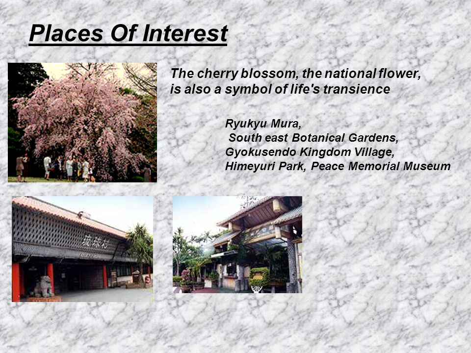 Places Of Interest The cherry blossom, the national flower, is also a symbol of life s transience Ryukyu Mura, South east Botanical Gardens, Gyokusendo Kingdom Village, Himeyuri Park, Peace Memorial Museum