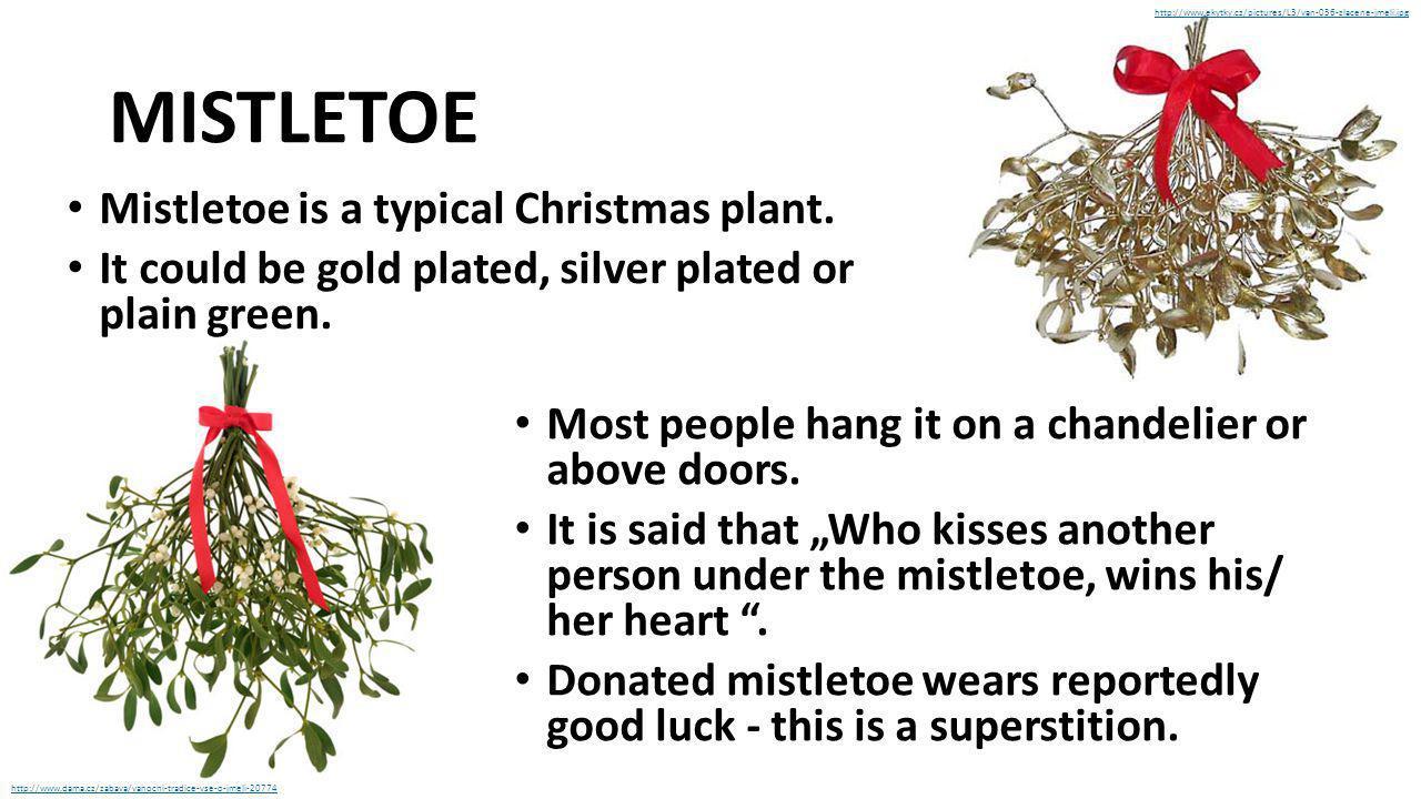MISTLETOE Mistletoe is a typical Christmas plant.