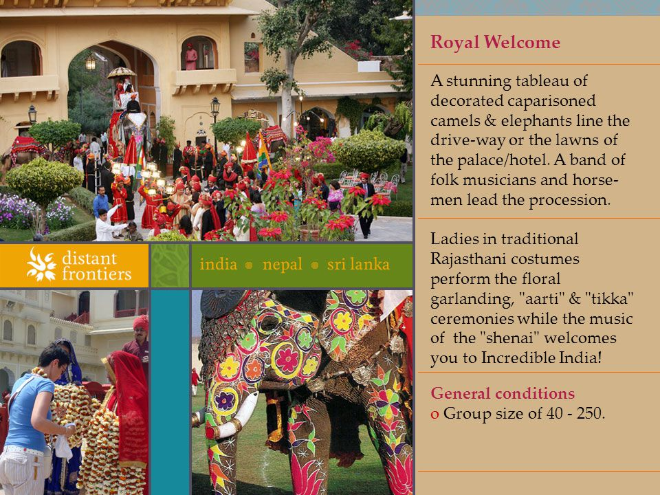 Royal Welcome A stunning tableau of decorated caparisoned camels & elephants line the drive-way or the lawns of the palace/hotel.