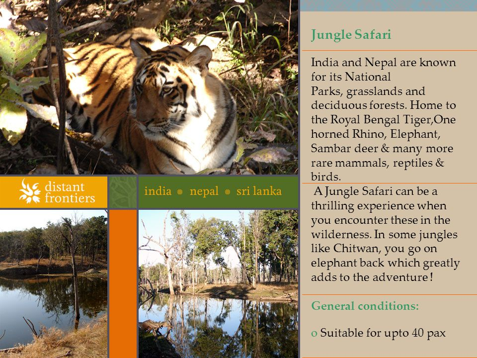 Jungle Safari India and Nepal are known for its National Parks, grasslands and deciduous forests.