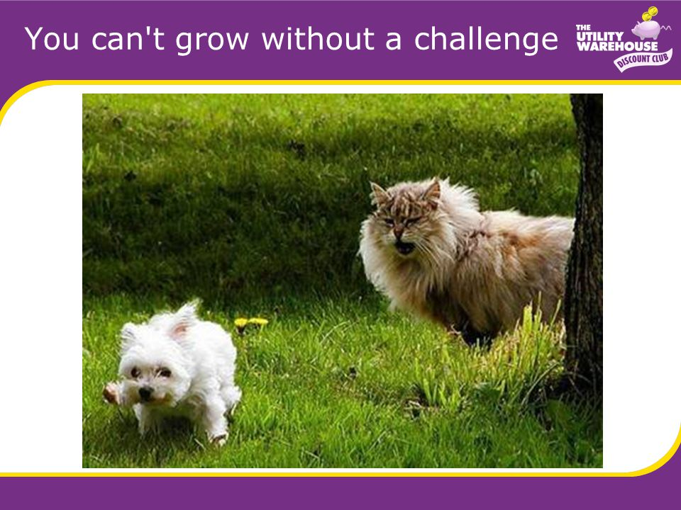 You can t grow without a challenge