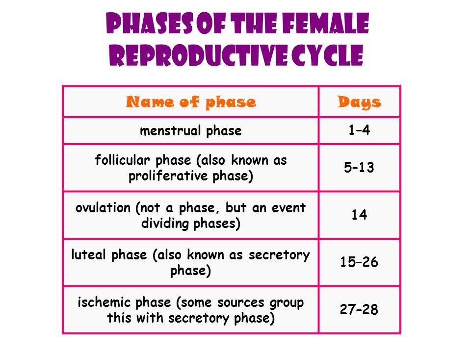 Menstruation is also called menstrual bleeding, menses, a period or catamenia.