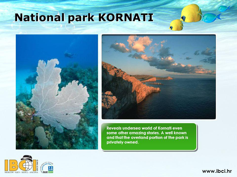 Reveals undersea world of Kornati even some other amazing stories.