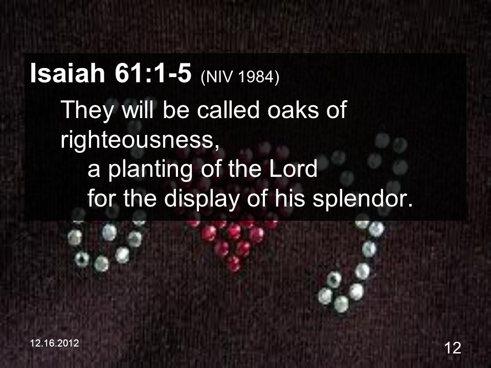 12.16.2012 12 Isaiah 61:1-5 (NIV 1984) They will be called oaks of righteousness, a planting of the Lord for the display of his splendor.