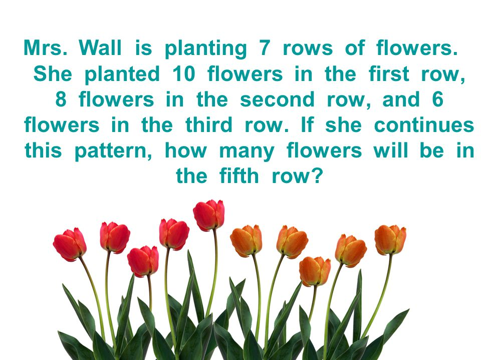 Mrs. Wall is planting 7 rows of flowers. She planted 10 flowers in the first row, 8 flowers in the second row, and 6 flowers in the third row. If she