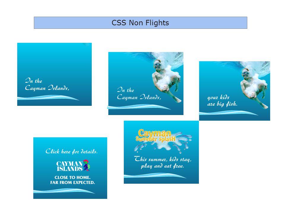 CSS Non Flights