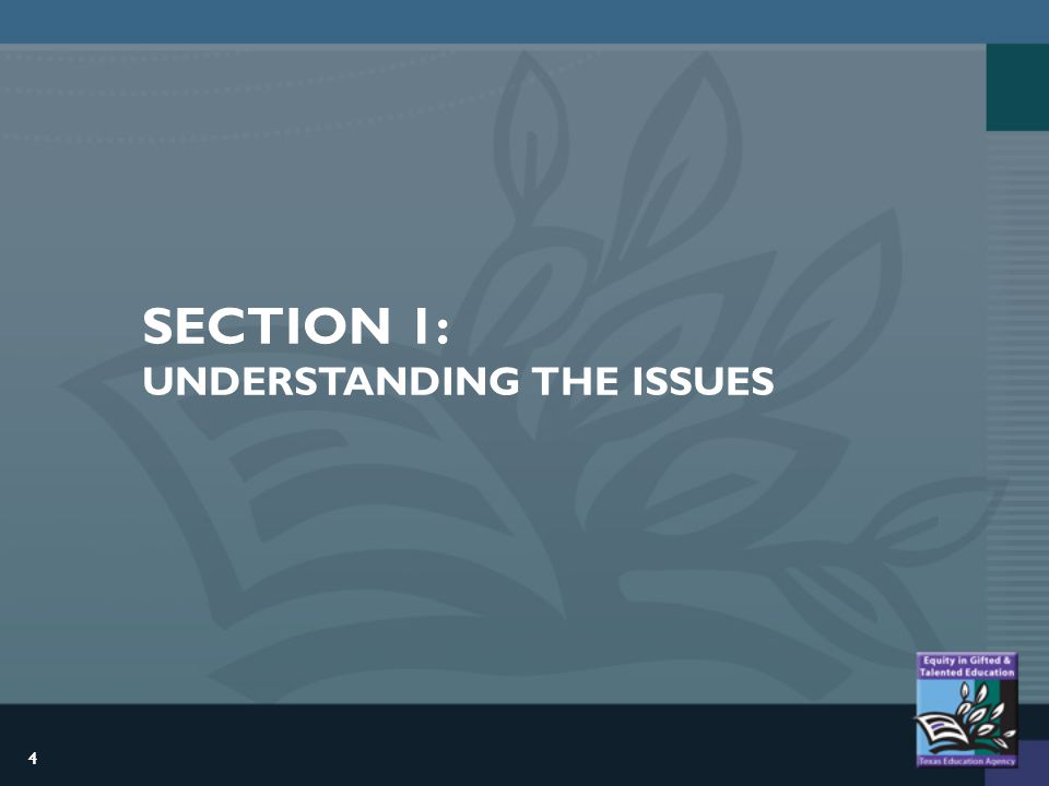 4 SECTION 1: UNDERSTANDING THE ISSUES 4