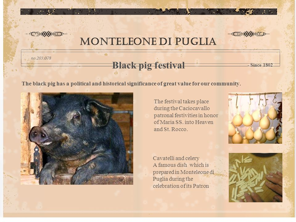 Monteleone di puglia Black pig festival - Since 1802 The black pig has a political and historical significance of great value for our community.