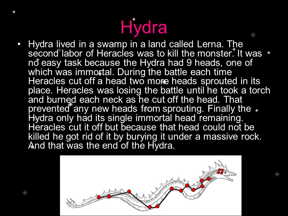 Hydra Hydra lived in a swamp in a land called Lerna.