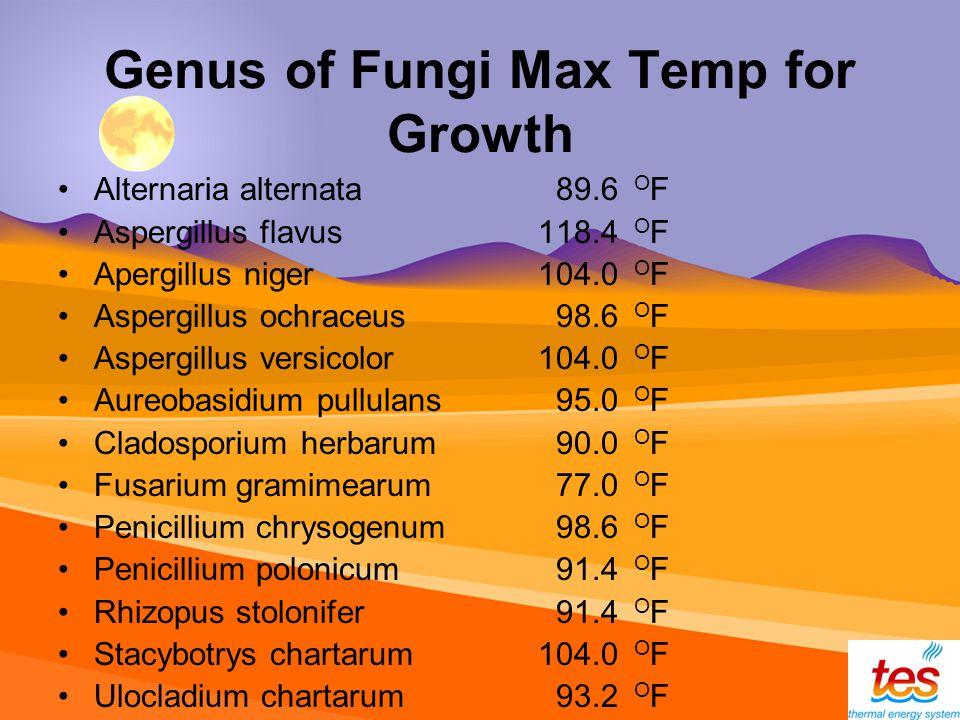 Genus of Fungi Max Temp for Growth Alternaria alternata 89.6 O F Aspergillus flavus 118.4 O F Apergillus niger 104.0 O F Aspergillus ochraceus 98.6 O