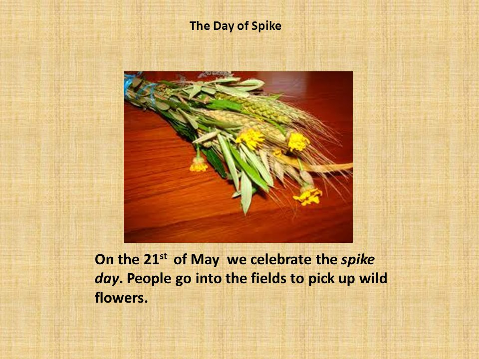 On the 21 st of May we celebrate the spike day. People go into the fields to pick up wild flowers.