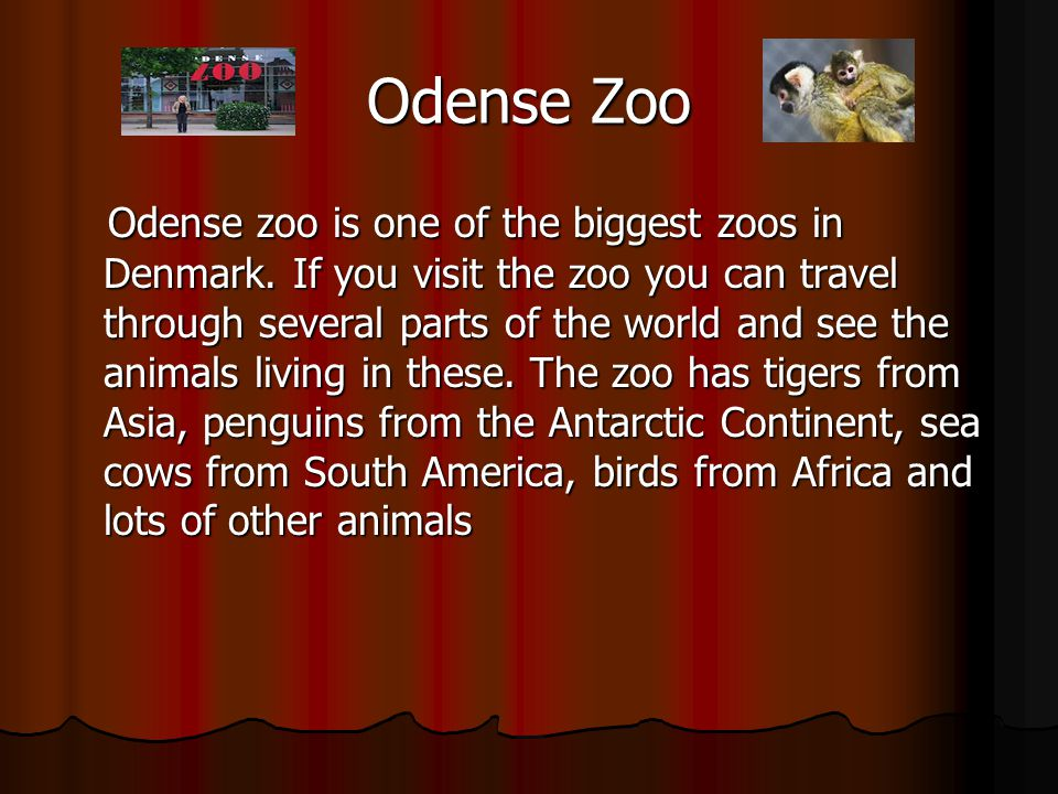 Odense Zoo Odense zoo is one of the biggest zoos in Denmark.