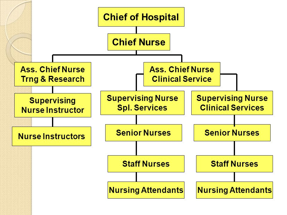 Chief of Hospital Chief Nurse Ass. Chief Nurse Trng & Research Ass. Chief Nurse Clinical Service Supervising Nurse Instructor Nurse Instructors Superv