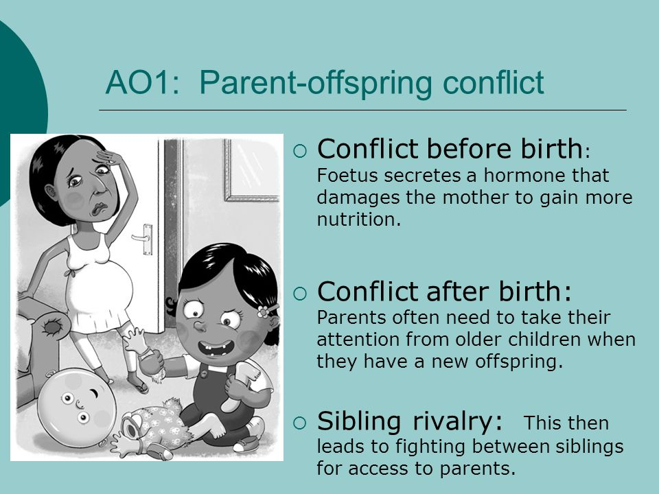 AO1: Parent-offspring conflict Conflict before birth : Foetus secretes a hormone that damages the mother to gain more nutrition. Conflict after birth: