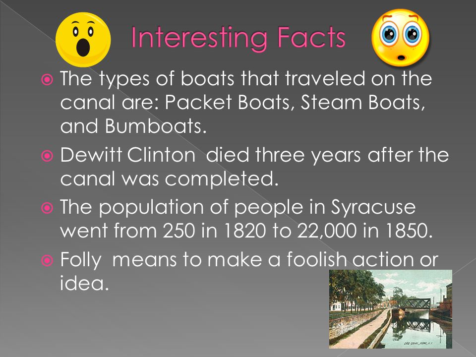 The types of boats that traveled on the canal are: Packet Boats, Steam Boats, and Bumboats.