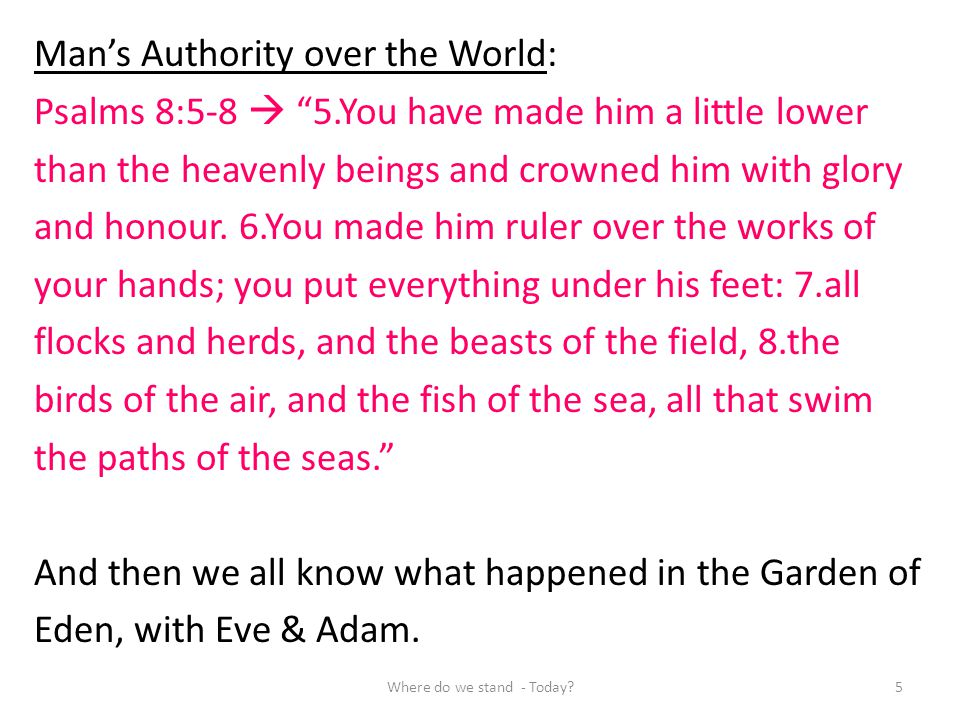 Mans Authority over the World: Psalms 8:5-8 5.You have made him a little lower than the heavenly beings and crowned him with glory and honour. 6.You m