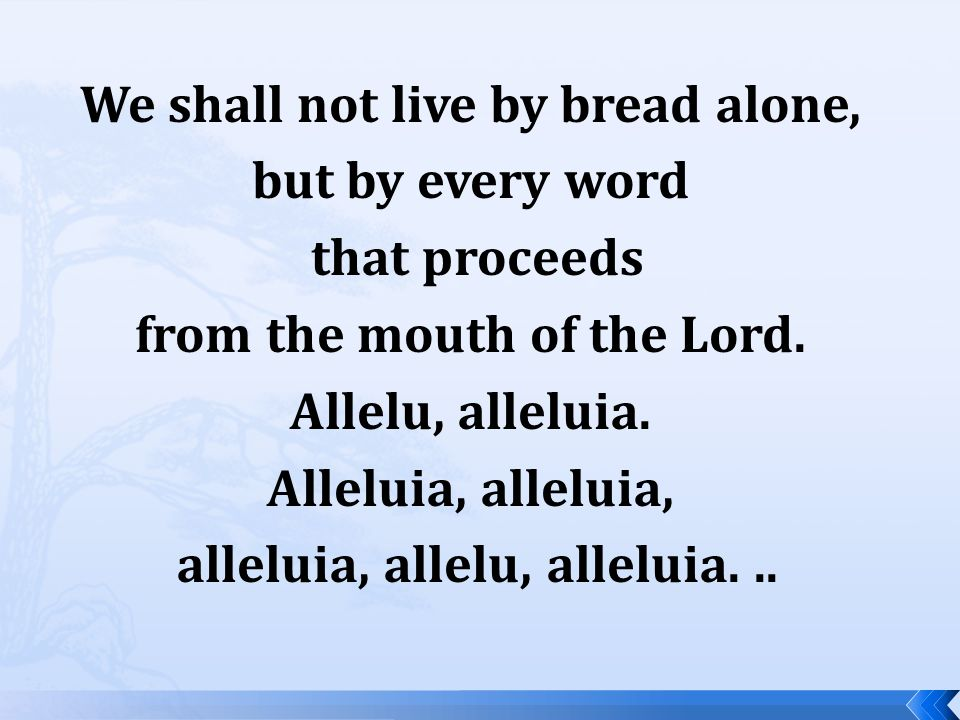 We shall not live by bread alone, but by every word that proceeds from the mouth of the Lord.
